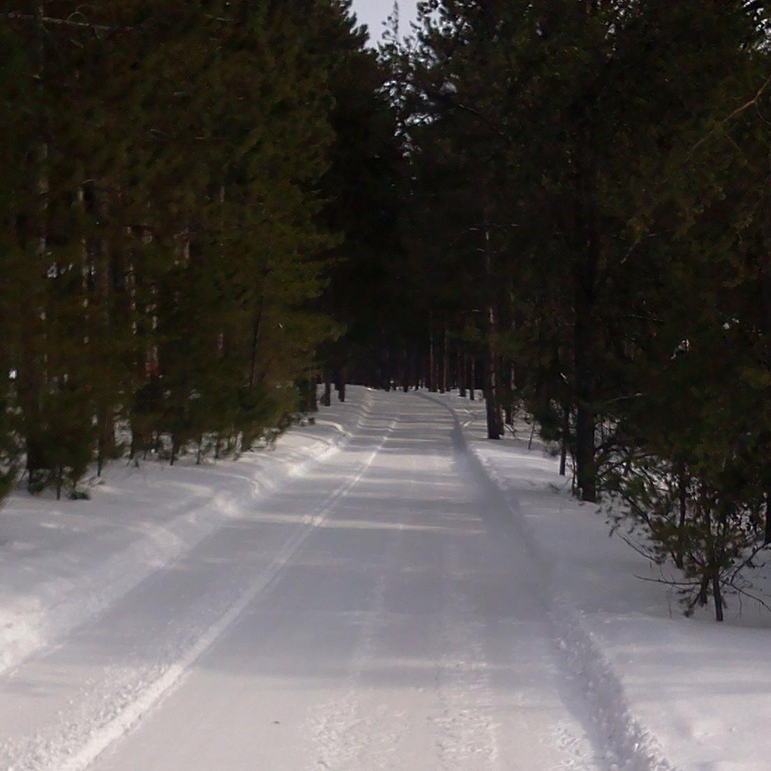 Snowy Snowmobile Trail