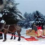 Sleigh ride at the Forts